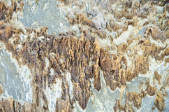 Texture of Sedimentary rock Stock Photography