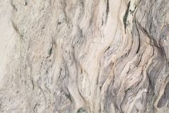 Texture Series - Stone Slab Polished Granite. Polished stone used in making kitchen countertops with natural pattern usually granite or other stone material stock image
