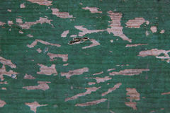 Texture shabby old green wood boards Stock Photo