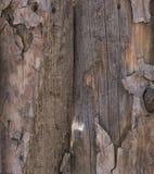 Texture shattered pine boards closeup stock photos