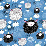 Texture of the sheep Royalty Free Stock Image