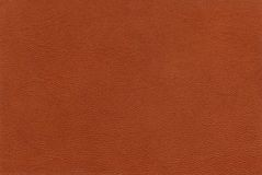 Texture sheep skin of reddish color Stock Photography