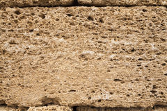 Texture shell limestone closeup Royalty Free Stock Photos