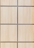 Texture  simulated wood panels, front view Stock Image