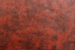 Texture of a skin Royalty Free Stock Photos