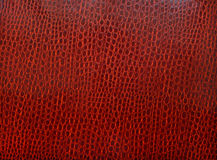 Texture of skin of a crocodile of claret color Stock Image