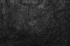 Texture of the skin Royalty Free Stock Photography