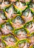 Texture of skin pineapple Stock Image
