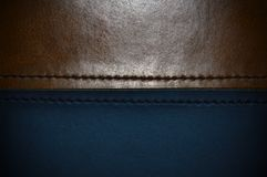 The texture of the skin and the seam in the middle royalty free stock image