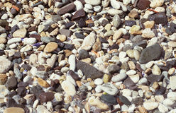 Texture of small sea pebbles Stock Photography