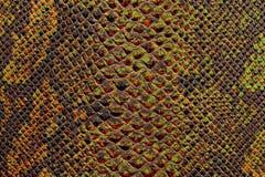 Texture of snake skin Stock Photos