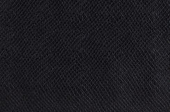 Texture of a snakeskin Stock Image