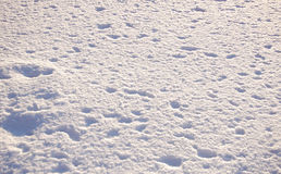 Texture of snow. With holes stock images