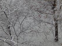 Texture snow fell on the street white stock photos