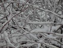 Texture snow fell on the street white royalty free stock photo