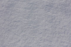 Texture of the snow in the sunlight Royalty Free Stock Photo
