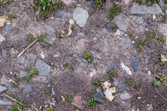 The texture of the soil in the flower bed for growing flowers and plants. Land. stock photos