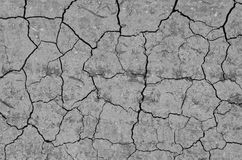 The texture of the soil. Old background with dried earth cracked from drought and dry climate Royalty Free Stock Images