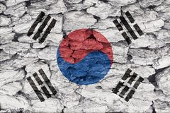 Texture of South Korea flag. Texture of South Korea Flag on a decorative tree bark stock photography