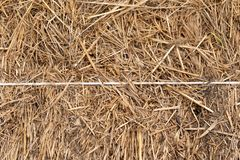 Texture of the stack of hay in close up stock image