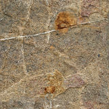 Texture of stone. High quality texture. Stone. Background Stock Images