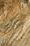 Texture stone Stock Images