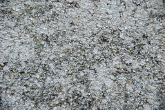 Texture of stone. With patches of moss Royalty Free Stock Photography