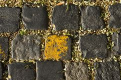 The texture of stone Royalty Free Stock Image