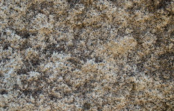 Texture of stone Stock Images