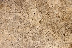 Texture of stone background. Texture of stone floor for background Royalty Free Stock Photography