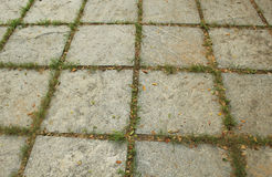Texture of stone block and grass Stock Photos
