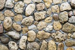 Texture of stone coquina wall Stock Photos