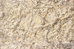 The texture of a  stone Royalty Free Stock Photo