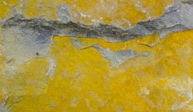 The texture of the stone has a lot of yellow mold stock photo