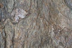 Texture on a stone mountain Stock Photo
