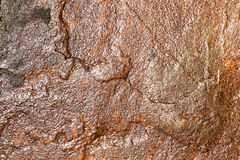Texture of stone Stock Photography