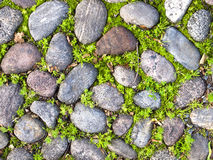Free Texture Stone On The Road Stock Image - 81408101