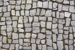 Texture. Stone path in the park Stock Photo
