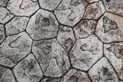 Texture of stone paving Stock Photo
