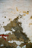 The texture of the stone.The plaster on the wall Stock Photo