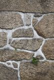 Texture of a stone wall. Royalty Free Stock Images