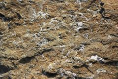 Texture of the stone with white veins. presumably travertine, gneiss or granite.  Stock Photos