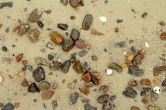 Texture of stones on the beach. Pebbles chaotically scattered on the beach in monochrome in winter Stock Photo