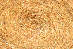 Texture of straw Royalty Free Stock Images