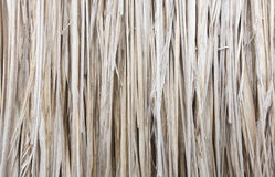 Texture of straw background Royalty Free Stock Photos