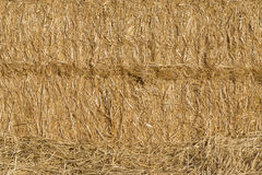 Texture of straw bale, truss. Paca background Royalty Free Stock Photography