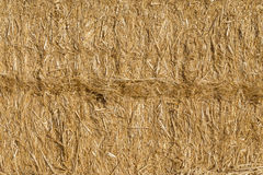Texture of straw bale, truss. Paca background Royalty Free Stock Image