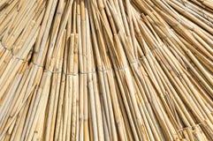Texture of straw beach umbrella Stock Photos