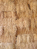Texture of straw. Stock Photography