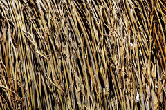The texture of straw. Texture of woven fence or a fence for the urban home and garden stock photography